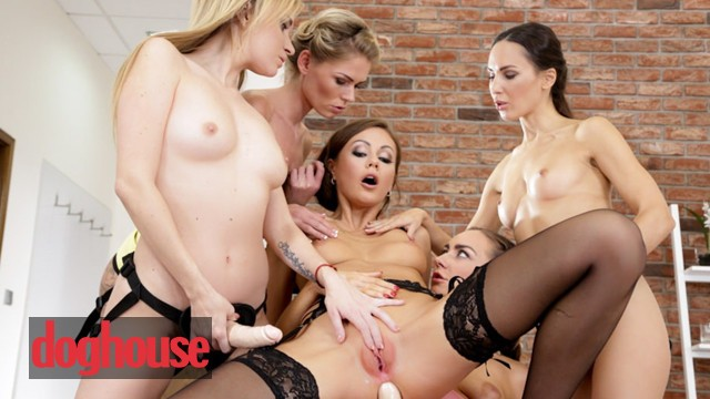 Dog house trained pees on bed Dog house - lesbian gets dominated by 4 strapons in gangbang