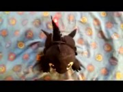 Dragon Toothless Plush in Head 2
