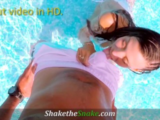 Shake The Snake – Hot POV Blowjobs