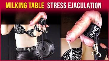 Milking Table – Edging Handjob & Testicle Stress Cumshot | Era