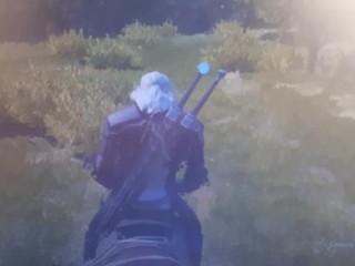 """Во время компьютерной игры """"Ведьмак"""" кончать одно удовольствие."""