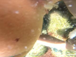 Underwater creampie