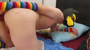 Drakone plays with a toy (no sound)