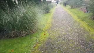 Risky Public Pathway Sex