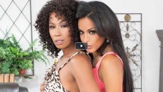 女同性恋者 Layla Sin 和 Misty Stone 咀嚼彼此的黑色手镯